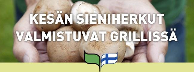 Kesän sieniherkut valmistuvat grillissä